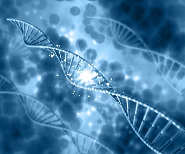 ¿Cuáles son las enfermedades hereditarias más comunes que los padres pueden transmitir a tus hijos?